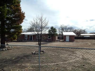 Single Family Home For Sale: 445 Bosque Loop
