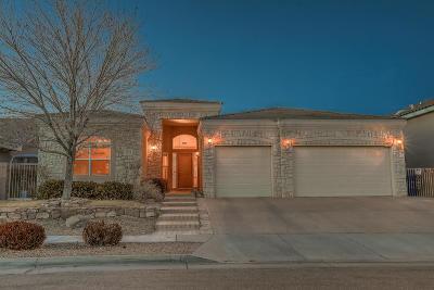 Albuquerque Single Family Home For Sale: 4501 Silver Arrow Drive NW