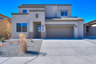 Rio Rancho Single Family Home For Sale: 1167 Grace Street NE