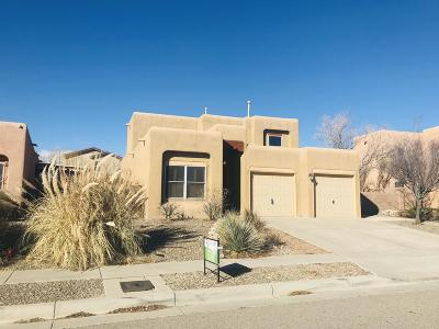 Albuquerque Single Family Home For Sale: 8635 Animas Place NW