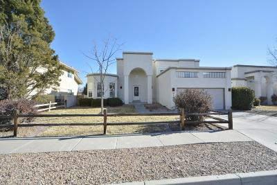 Albuquerque Single Family Home For Sale: 6124 Alderman Drive NW