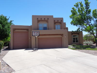 Albuquerque Single Family Home For Sale: 2308 Via Seville Court NW