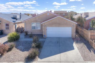 Albuquerque Single Family Home For Sale: 8834 Thor Road SW