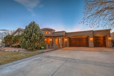 Albuquerque Single Family Home For Sale: 8601 Royal Glo Drive