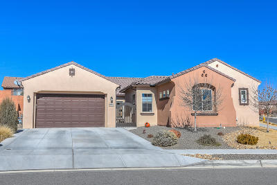 Rio Rancho Single Family Home For Sale: 4030 Plaza Colina Lane