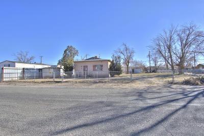 Albuquerque Single Family Home For Sale: 224 Camino Uno SW