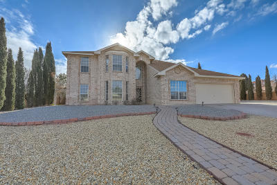 Rio Rancho Single Family Home For Sale: 6750 Lazy River Court NE