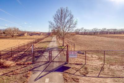 Albuquerque Single Family Home For Sale: 306 Lagunitas Lane SW