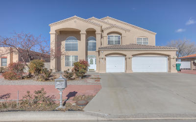 Rio Rancho Single Family Home For Sale: 4013 St Andrews Drive SE