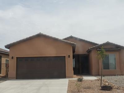 Rio Rancho Single Family Home For Sale: 4026 Mountain Trail Loop NE