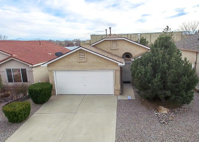 Albuquerque Single Family Home For Sale: 3108 Brian Meadows Place NW