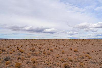 Socorro County Residential Lots & Land For Sale: Lot 7 Rio Grande Estates #4