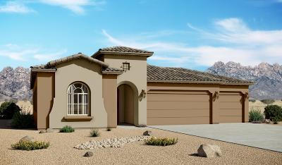 rio rancho Single Family Home For Sale: 4009 Windy Road NE
