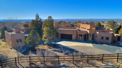 Albuquerque Single Family Home For Sale: 9650 Wilshire Avenue NE