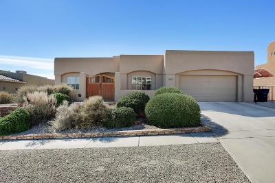Albuquerque Single Family Home For Sale: 4612 Congress Avenue NW