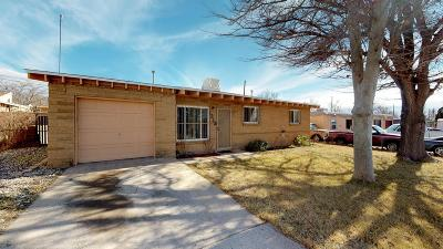 Albuquerque Single Family Home For Sale: 1212 Gretta Street NE