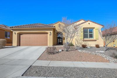 Albuquerque Single Family Home For Sale: 8723 Placitas Roca Road