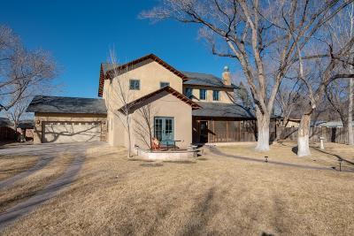 Albuquerque Single Family Home For Sale: 2305 Matthew Avenue NW