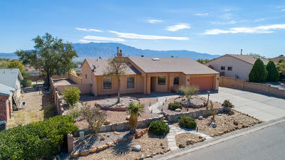 Rio Rancho Single Family Home For Sale: 576 Christine Drive NE