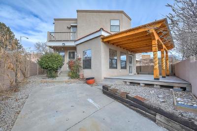 Albuquerque Single Family Home For Sale: 820 Monte Alto Drive NE