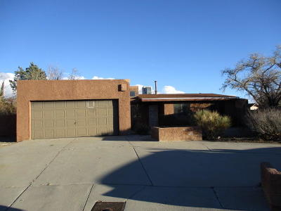 Albuquerque Single Family Home For Sale: 5400 Cabrillo Circle NW