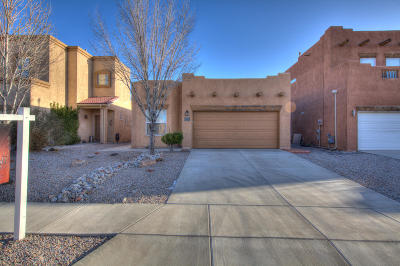 Albuquerque, Rio Rancho Single Family Home For Sale: 1354 Mountain Vista Drive SE