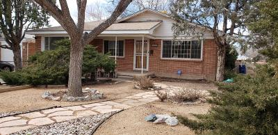 Albuquerque Single Family Home For Sale: 1109 Georgia Street SE