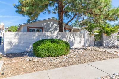 Albuquerque Single Family Home For Sale: 9905 San Gabriel Road NE