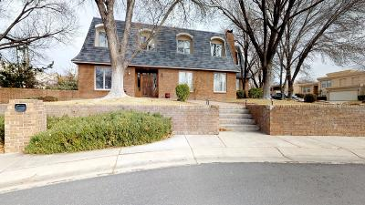 Albuquerque Single Family Home For Sale: 9315 Tanoan Drive NE