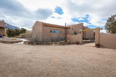 Placitas Single Family Home For Sale: 31 Tunnel Springs Road