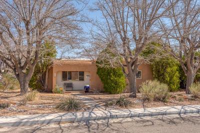 Albuquerque Single Family Home For Sale: 1112 Calle Del Ranchero NE