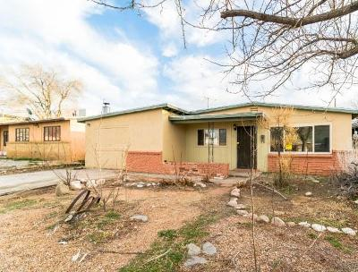 Albuquerque Single Family Home For Sale: 10112 Matthew Avenue NE