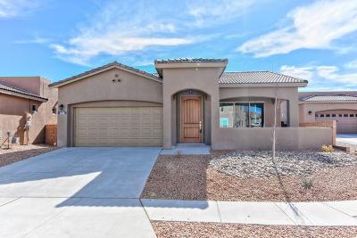 Albuquerque Single Family Home For Sale: 7212 Valle Jardin Lane NW