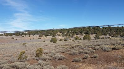 Sandia Park Residential Lots & Land For Sale: Mariposa Road