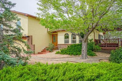 Albuquerque Single Family Home For Sale: 13100 Rover Avenue NE