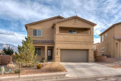 Rio Rancho Single Family Home For Sale: 7231 Wasilla Drive NE