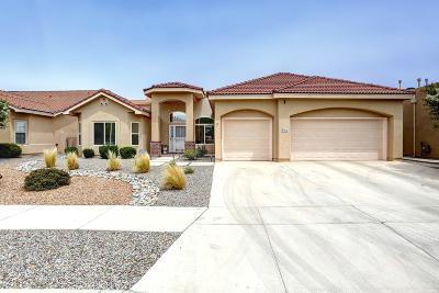 Albuquerque Single Family Home For Sale: 2316 Arroyo Falls Street NW