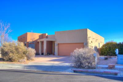 Albuquerque Single Family Home For Sale: 4619 Crestridge Avenue NW