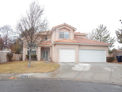 Albuquerque Single Family Home For Sale: 6725 Mesa Solana Place NW