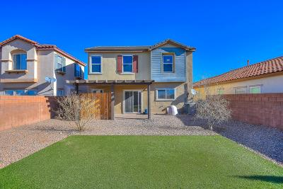 Rio Rancho Single Family Home For Sale: 948 Waterfall Drive NE