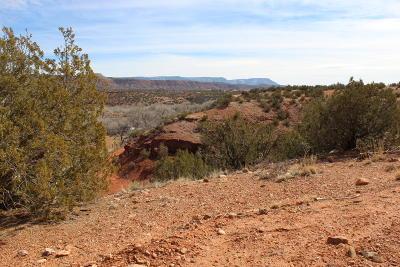 Jemez Pueblo NM Residential Lots & Land For Sale: $100,000