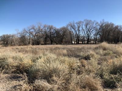 Albuquerque Residential Lots & Land For Sale: 2222 Perry Road SW