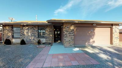 Rio Rancho Single Family Home For Sale: 813 Lisbon Ave SE Avenue SE