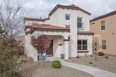 Albuquerque Single Family Home For Sale: 2405 Cunningham Avenue SE