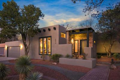 Albuquerque Single Family Home For Sale: 2213 Camino De Los Artesanos NW