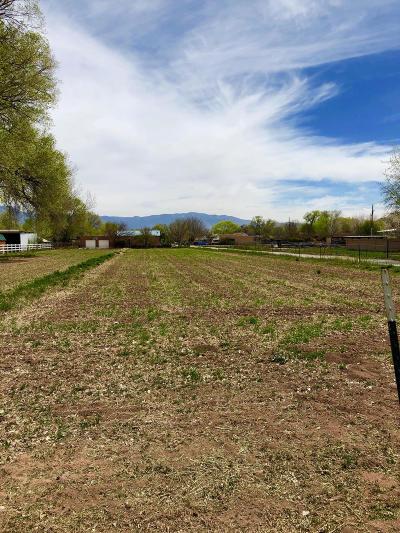 Los Ranchos Residential Lots & Land For Sale: 7616 Rio Grande Boulevard NW
