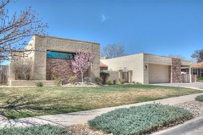 Albuquerque Single Family Home For Sale: 6025 Casa Feliz NE