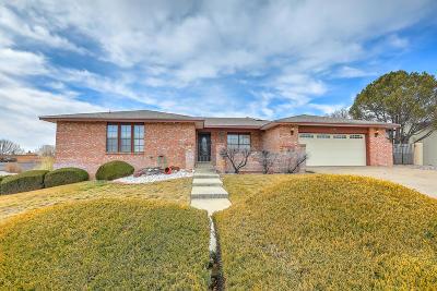 Single Family Home For Sale: 5301 Estrellita Del Norte Road NE