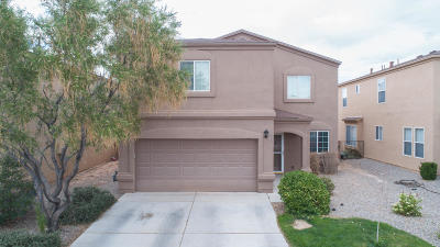 Rio Rancho Single Family Home For Sale: 1117 Desert Paintbrush Lp Loop