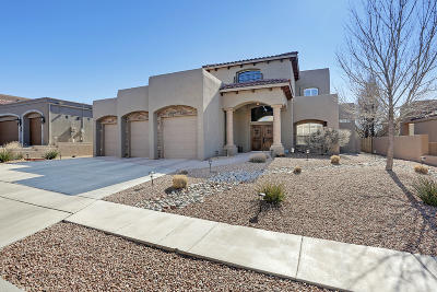 Single Family Home For Sale: 9904 Datura Trail NE